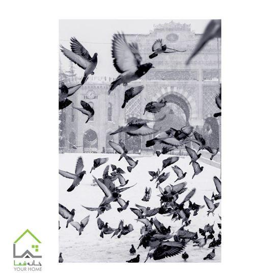 تابلوی پرندگان برف