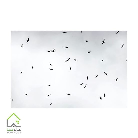 تابلو تزیینی هزار پرنده