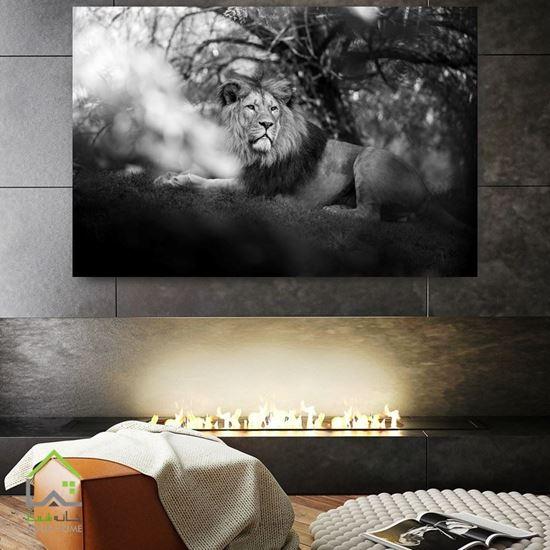 تابلو دیواری سیاه سفید شیر