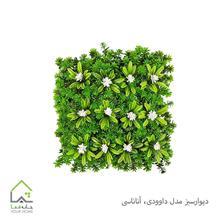 تصویر دیوار سبز مدل داوودی،آناناسی