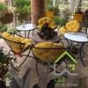 تصویر میز و صندلی باغی و تراس مدل مهتاب (الماس)